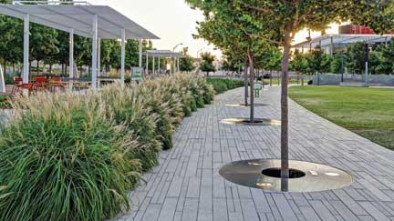 commercial landscaping st. petersburg, fl